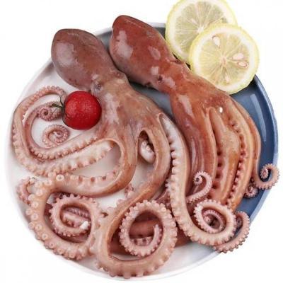 海鮮 超大長腿 冷凍八爪魚 網紅爆頭 麻辣八爪魚 章魚 魷魚 有墨 約1斤 迷你八爪魚【一斤約5個左右】