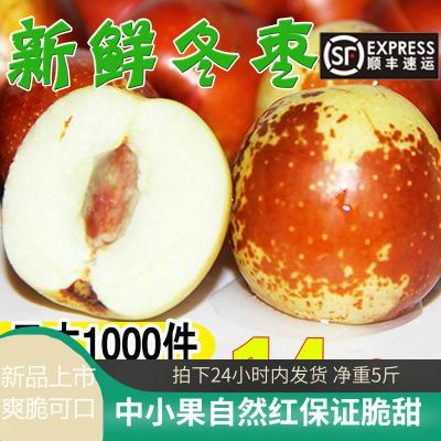 冬棗新鮮5斤/斤大荔陜西沾化特大大果青棗鮮棗水果當季整箱濱州