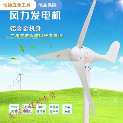 定做 小型風力發電機100W200W300W風能發電機12V24V家用路燈