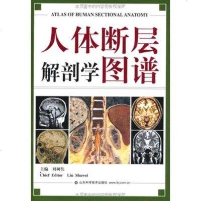 人體斷層解剖學圖譜劉樹偉山東科學技術出版社978331328 9787533132958