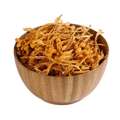 通惠 蛹虫草礼盒50克/盒 北冬虫夏草品质正宗无熏染虫草花煲汤食用提鲜