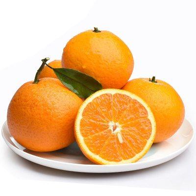 【年后2月5日左右发货】【中华特色】湘西馆 湘西保靖脐橙5斤 单果果径60-65mm 时令新鲜水果 华中