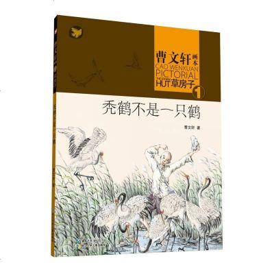 曹文軒畫本·草房子1:禿鶴不是一只鶴