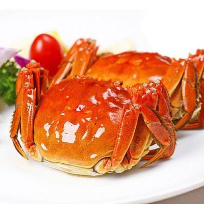【9月上市】 蟹赟 大闸蟹888型现货实物活鲜礼盒 公4.0两/只 母3.0两/只 4对8只螃蟹 去绳净重