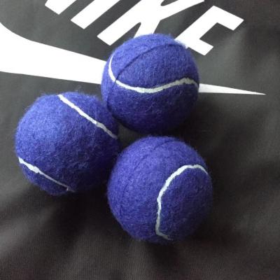 初級訓練網球閃電客兒童訓練網球狗狗耐咬網球初學者高彈力練習訓練網球 藍色