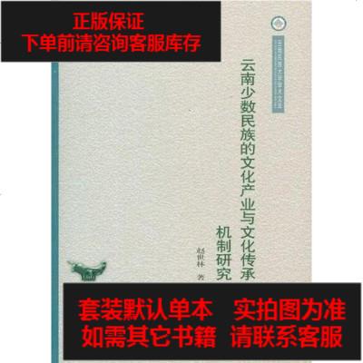 【二手8成新】云南少数民族的文化产业与文化传承机制研究/云南民族大学学术文库 9787105110001