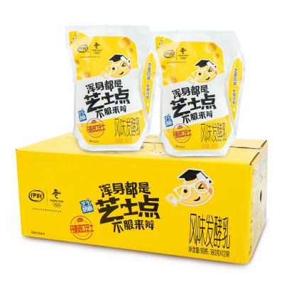伊利芝士酸奶180g*12袋风味发酵乳牛奶网红袋装芝士点