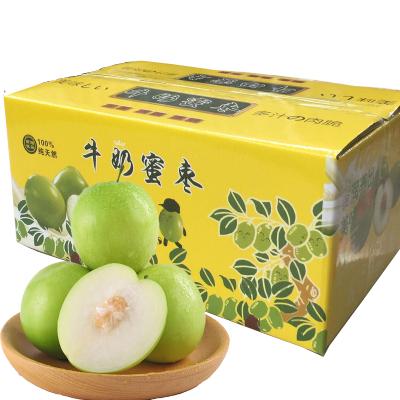 台湾青枣 牛奶枣  15个(偶数发货,  拍2件合并发货1个礼盒)