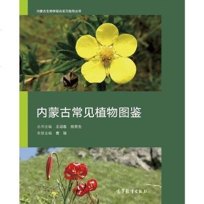 內蒙古常見植物圖鑒