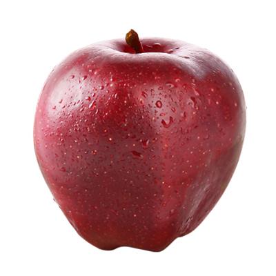 陈小四水果 甘肃天水花牛苹果 2.5斤 红苹果 新鲜水果 生鲜水果 其他