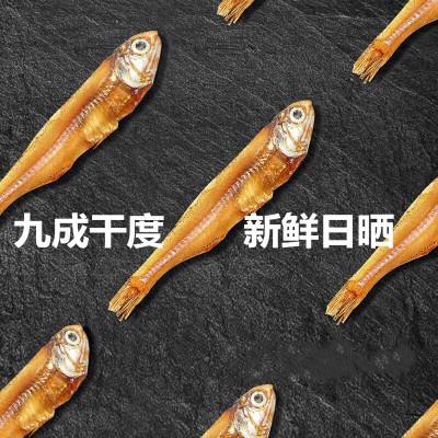 【買2送1】魚臻多 小魚干特產海產品干貨海鮮干貨咸魚干海魚銀魚干散裝海燕魚干國產食品 廣西北海新鮮500g