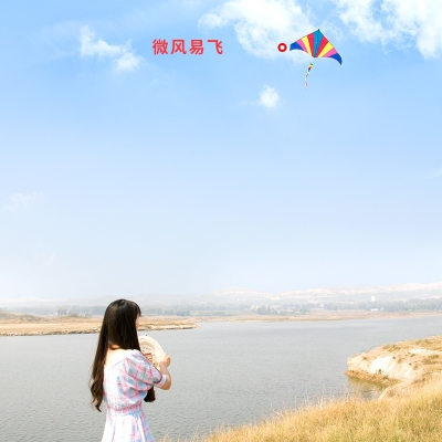風箏帶100米線板濰坊小卡通老鷹蝴蝶兒童初學者成人微風易飛新款