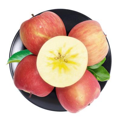 果貴緣 新疆阿克蘇冰糖心蘋果 果經85mm 彩箱裝10斤 新鮮水果脆甜多汁