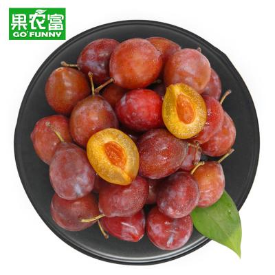 果農富 新疆小法蘭西西梅精品禮盒 4斤 單果20-40g 新鮮水果李子小西梅