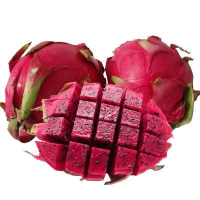 苗家十八洞 廣西紅心火龍果4.5斤 單果重250-350g 新鮮時令水果產地直發
