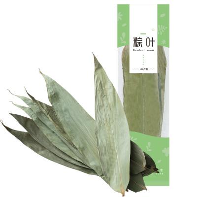 盛耳粽葉新鮮大粽子葉100張大號干粽葉包粽子的葉子竹子端午節材料送粽繩