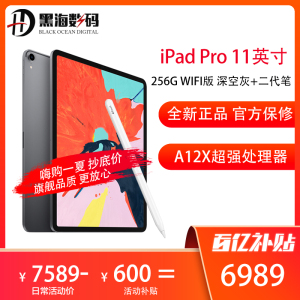 Apple iPad Pro 11英寸 256GB WIFI版 深空灰+Apple Pencil 二代笔
